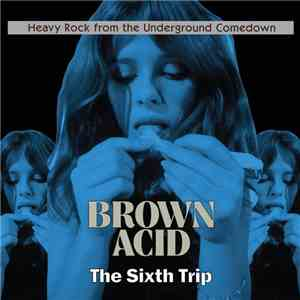 album Various - Brown Acid: The Sixth Trip mp3 download