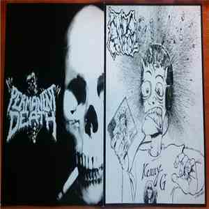 album Ruido Genital / Permanent Death - Split mp3 download